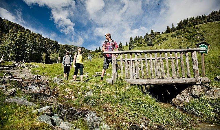 Gäste beim Wandern in den Bergen