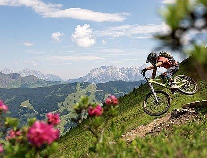 Downhill-Biker im Salzburger Land
