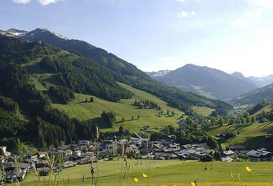 Sommerwiese in den Bergen